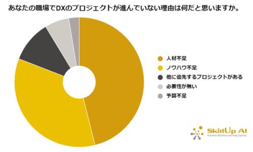 スキルアップAI株式会社 日本企業のDX進まず、組織全体のITリテラシーも阻害要因に